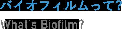 バイオフィルムって?What's Biofilm?